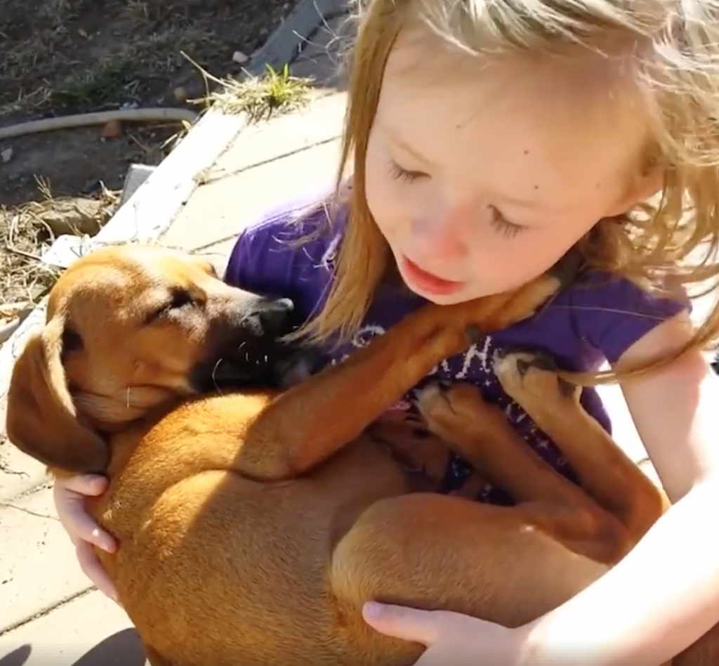 Little Girl Improvises The Cutest Lullaby As She Holds Her Rescue Dog