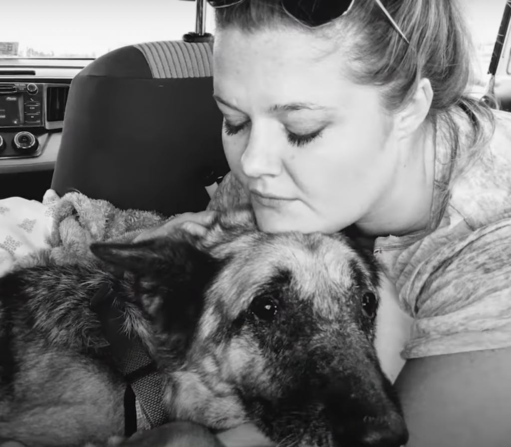 Former Police Dog Was Surrendered To Kill Shelter, But Then The Perfect Family Came Along