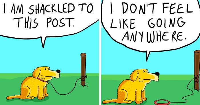 Hilarious 'Coco The Pessimist Dog' Comics That Every Pessimist Will Relate To