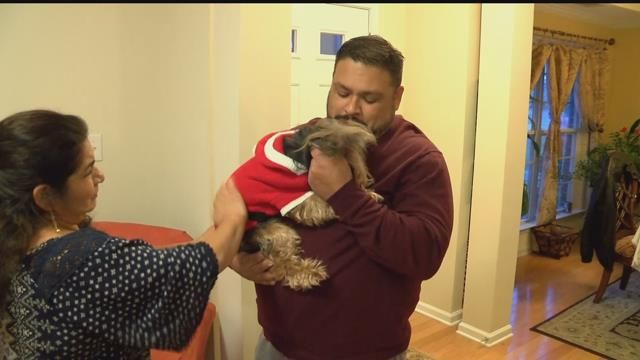 Miracle? Nope. Microchip! Blind Yorkie From South Florida Turns Up In NC