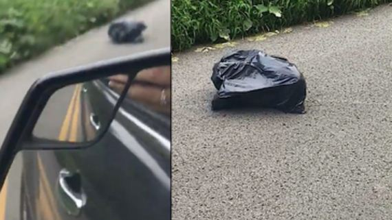 Woman Pulls Over When She Sees A Trash Bag Walking Down The Street