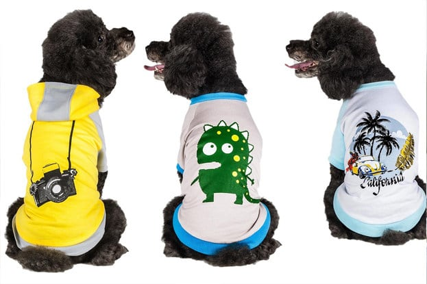 The Best Pieces Of Clothing For Dogs On Amazon