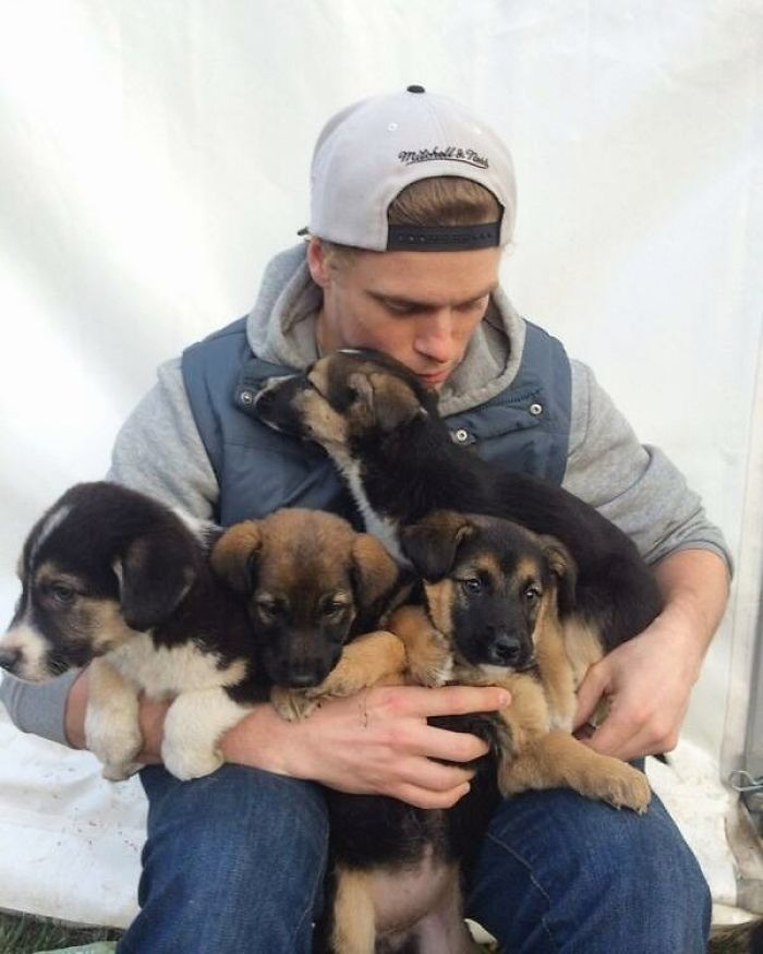 US Olympic Skier Saves 90 Dogs From Korean Dog Meat Farm