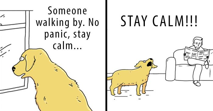 Differences Between Cats And Dogs That Are Impossible Not To Laugh At