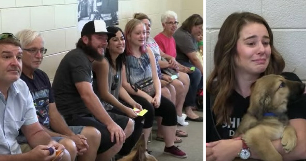 Families Adopt Puppies Before Meeting Them, Tears Start Flowing Once They Enter The Room