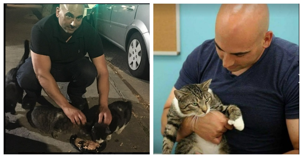 A Man Fed A Stray Cat One Night, Never Expecting It To Snowball To An Extreme 3 Years Later