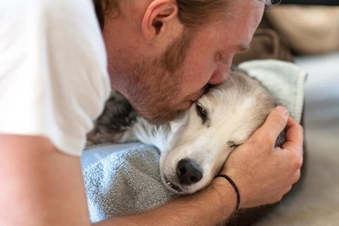 Touching Photo Captures Emotional Farewell Between a Man and His Best Friend