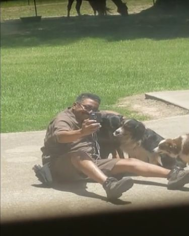 Mom Looks Outside And Catches The UPS Guy With The Dogs
