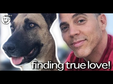 "Steve-O Of Jackass Fame ""Finds True Love"" When He Rescues A Peruvian Street Dog"
