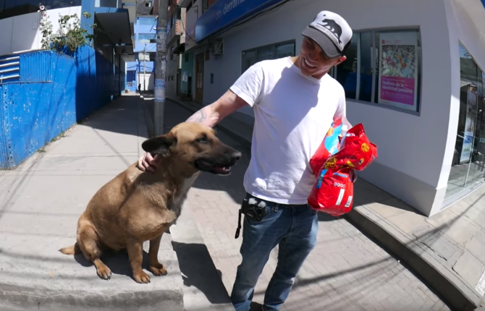 TV Star Filming In Peru Comes Across A Stray, And Their Lives Are Changed Forever