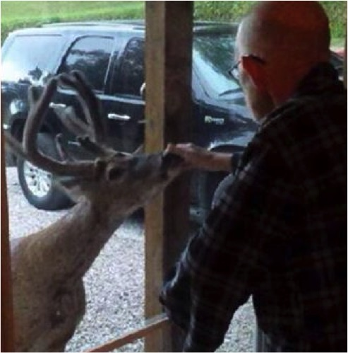 Woman's Sick Father's About To Die, But That's When A Deer Shows Up