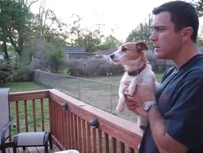 Jack Russell totally loses it after owner mentions squirrels