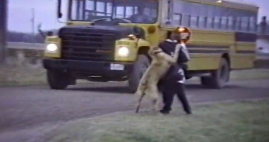 Dogs Who Are Willing To Do Whatever It Takes To Keep Their Humans From Going To School