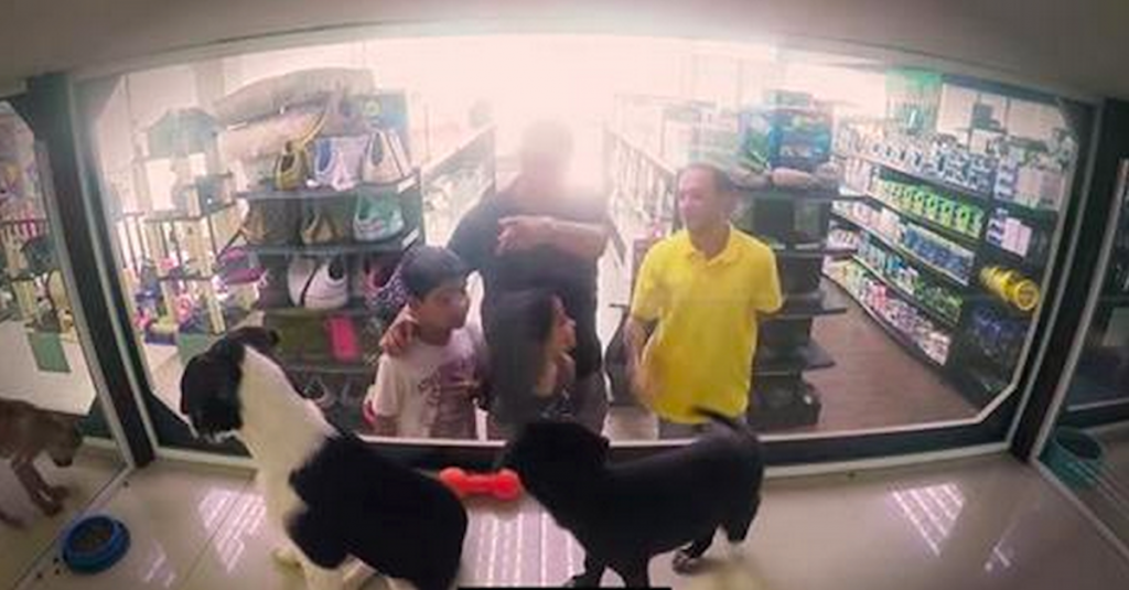 Pet Store Replaces All Of Its Animals With Rescues For Just One Day