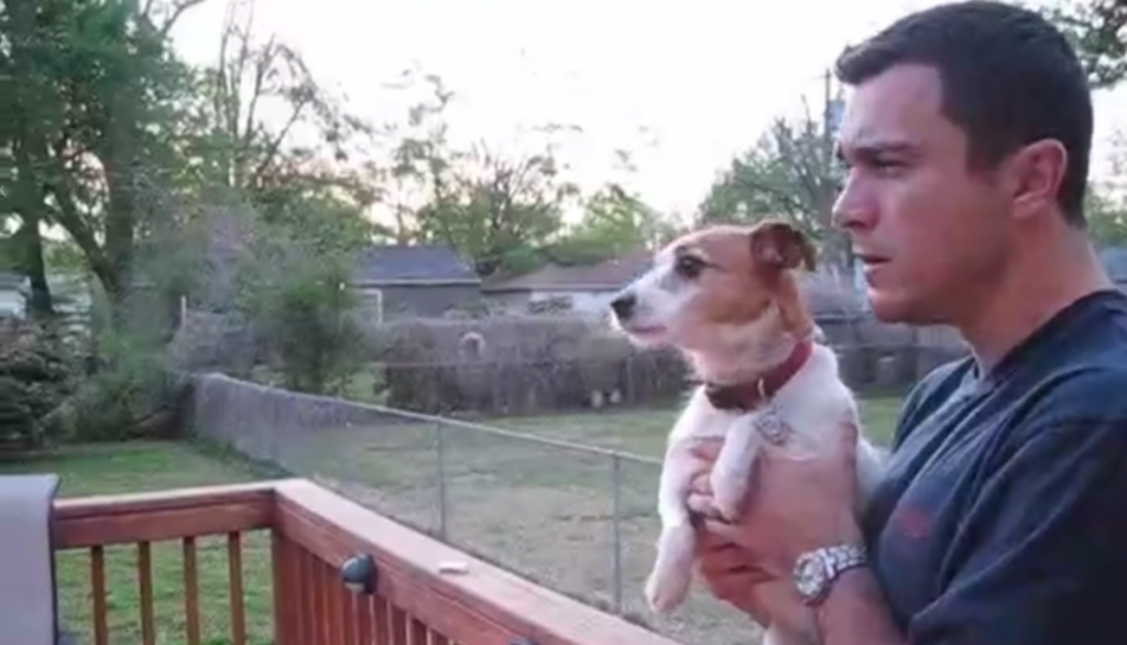 Jack Russell Terrier Totally Loses Her Grip When Dad Says The 'S' Word