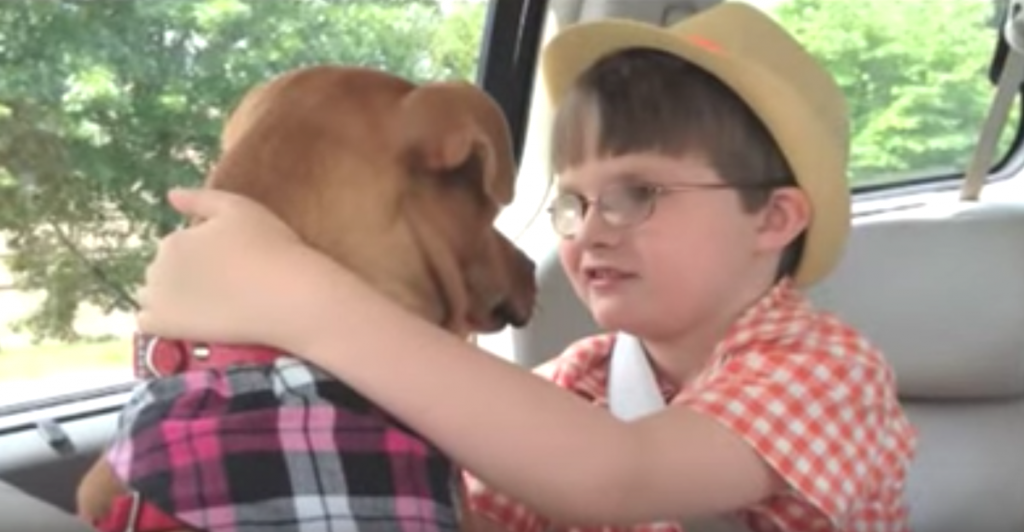 A Dying Dog Meets A Boy With Autism, And Both Of Their Lives Are Changed Forever