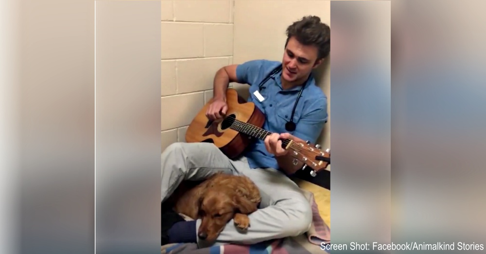 Vet Soothes His Nervous Puppy Patient With A Sweet Song