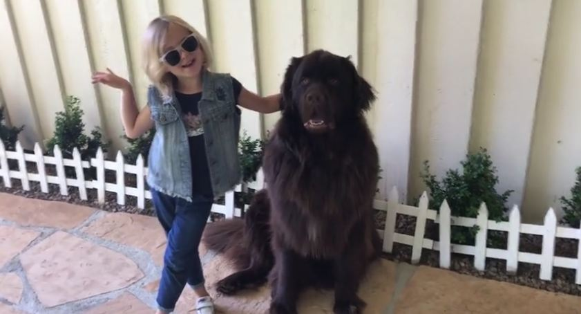 Cute girl and her doggy strike adorable poses