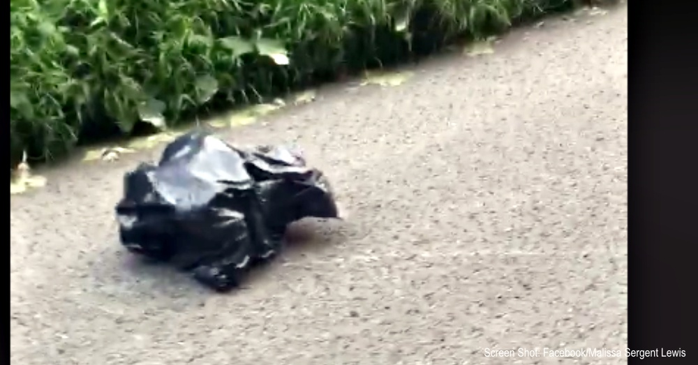 Woman Sees Trash Bag Moving In The Road And Stops To Check It Out