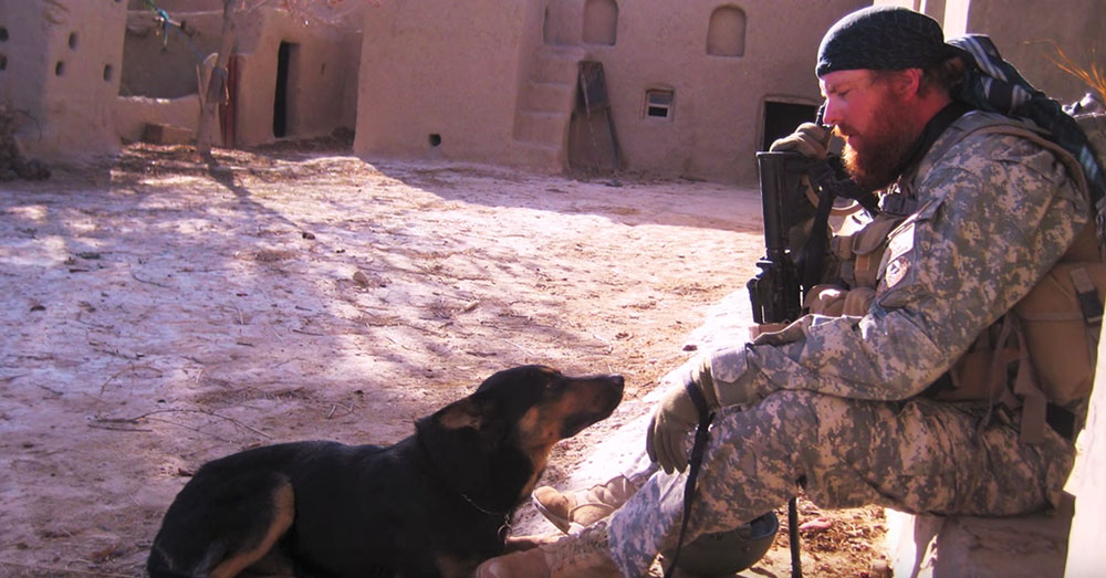Veteran Lays To Rest Hero K9 Who Saved His Life In Afghanistan