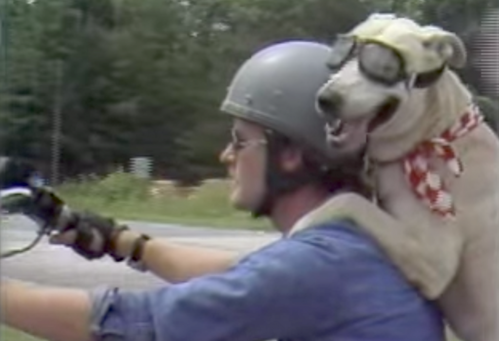 Man Traded A Beer For A Dog And Gained A Best Friend For The Road