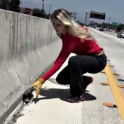 Kitten Abandoned On Busy Freeway With Little Hope For Survival