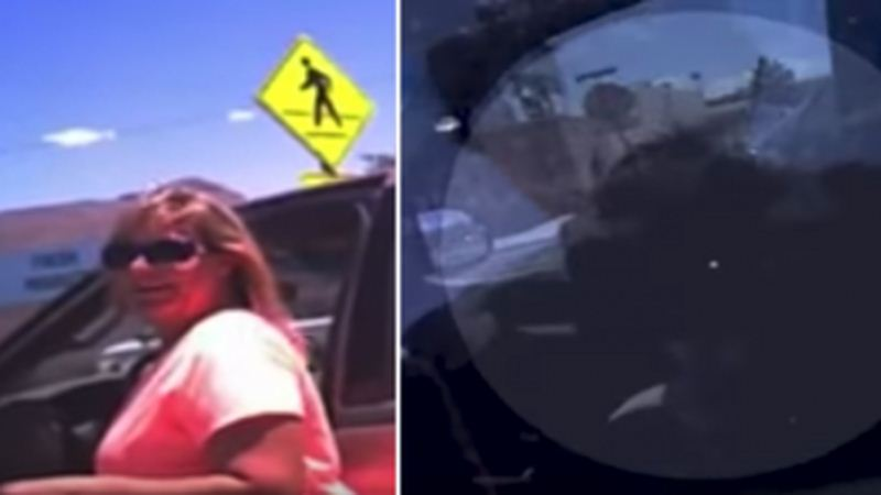 Woman Claims Cop Forced Her To Suffer In Hot Car Because She Left Her Dog Inside