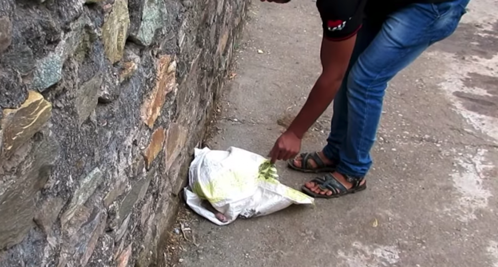 Rescuers Approach A Scared And Injured Puppy Hiding From The World In A Bag