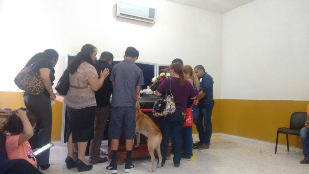 Missing Dog Somehow Knows To Show Up To Owner's Funeral