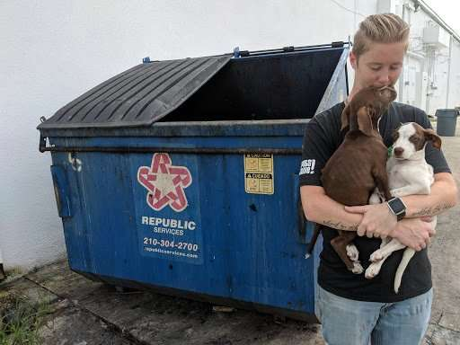 Puppies Thrown Away With Trash In A Dumpster Are So Happy To Be Rescued