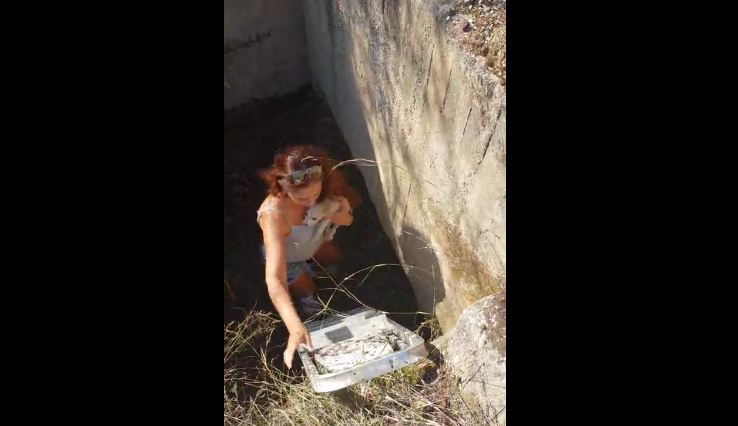 Woman rescues puppy trapped in ditch