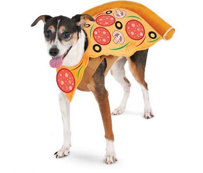 Pizza Slice Pet Suit