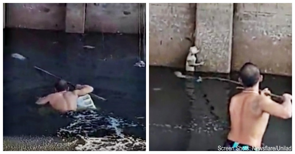 Man Swims Through Polluted River For Cat