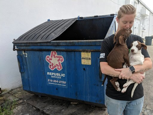 Two puppies found alive in trash dumpster behind Texas grocery store