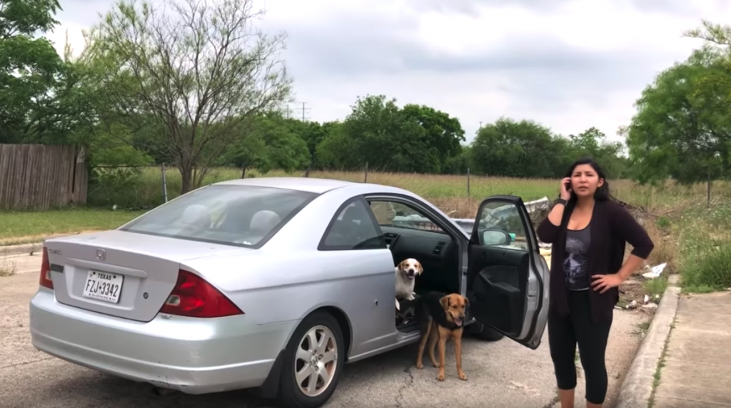 Good Samaritan Follows Dog Dumper Into Vacant Lot And Confronts Her On Camera