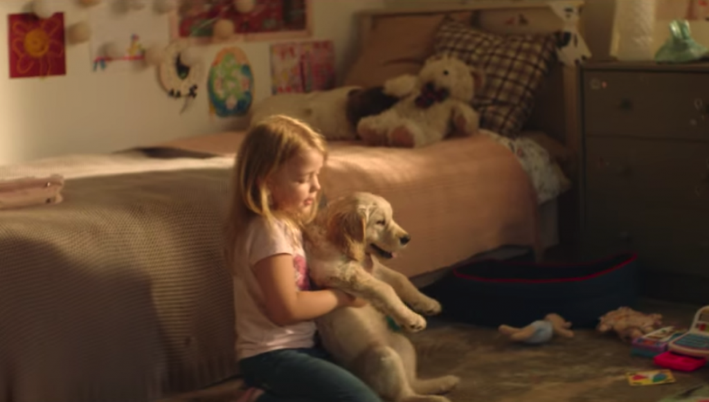 Short Film Goes In A Different Direction To Try To Stop Dog Abandonment