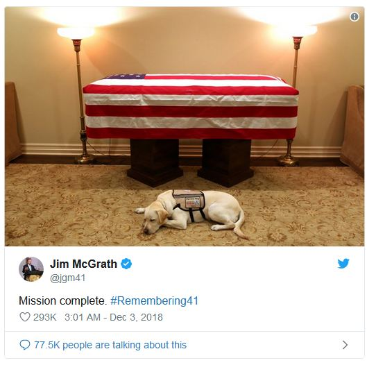 Sully, George H.W. Bush's Services Dog, Loyally Bids Farewell