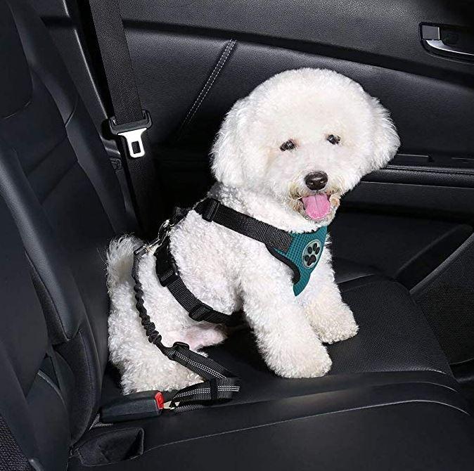 Dog Car Harness >> Slowton Dog Car Harness Plus Connector Strap