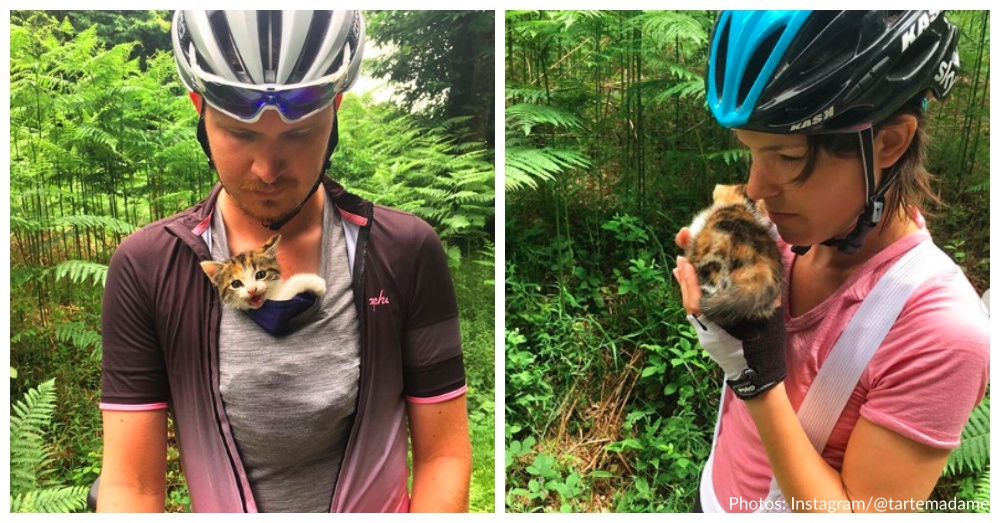 Tiny Kitten Rescued By Cyclists
