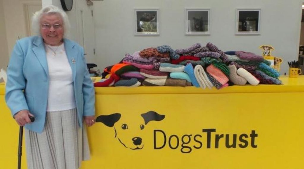 Loving 89-Year-Old Woman Has Knitted Over 450 Coats For Shelter Dogs