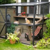 20 People Are Converting Their Patios Into Safe Outdoor Hangouts For Their Pets
