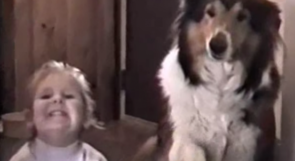Mom Says 'Smile Real Big And Say Cheese,' And The Dog Flashes His Pearly Whites