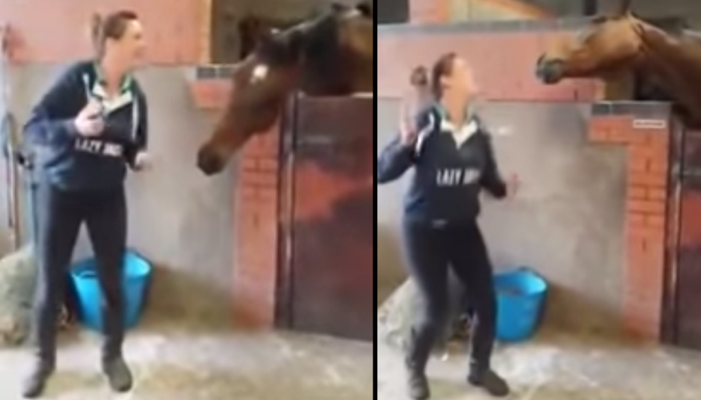 Woman Starts Dancing To A Song, Then Her Horse Decides It's His Turn