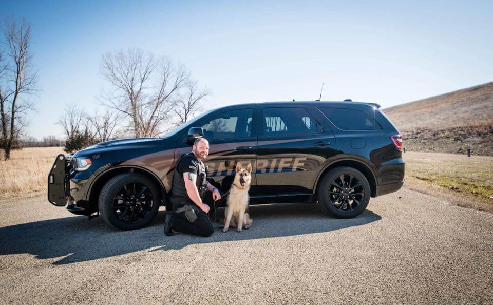 Formerly abused and abandoned dog is now a police K9