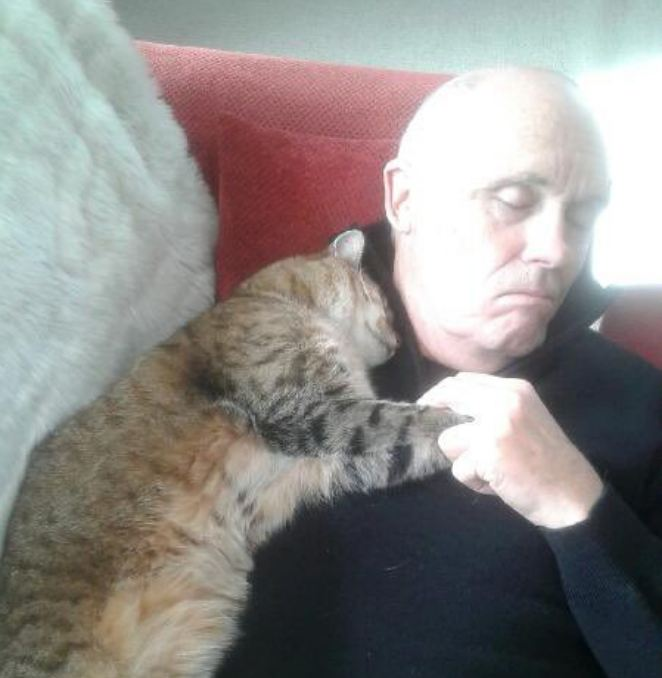 Man Recovering From Surgery Wakes To Snuggling Cat — But He Doesn't Own A Cat