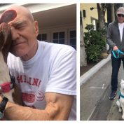 10 Celebrities That Are Making The World A Better Place For Animals