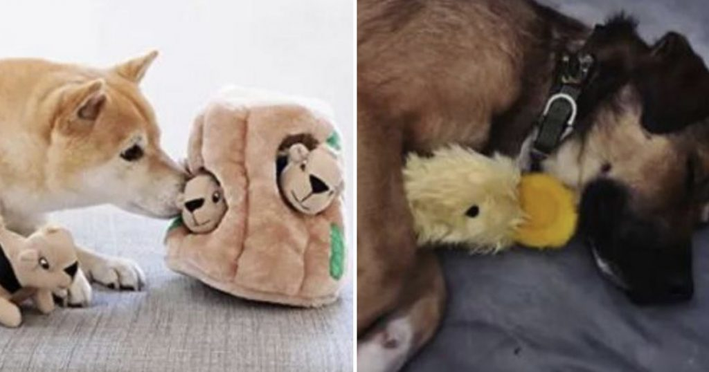 24 Awesome Pet Toys On Amazon That People Actually Swear By