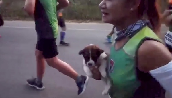 Marathon Runner Rescues Abandoned Puppy, Carrying Him 19 Miles To The Finish Line