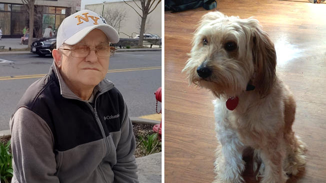 Help Mellow find his way back to his 70-year-old 'best friend'