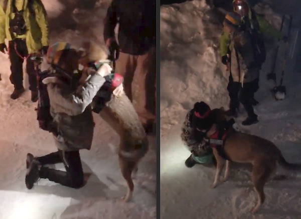 Woman Has Emotional Reunion With Dog Rescued From Avalanche